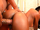 Zealous brunette sucks a huge cock and gets banged doggy style