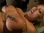 Tattooed milf with big boobs gives submissive blowjob in the torture room