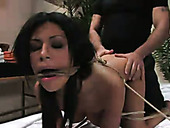 Curvy brunette nympho with big boobies is tied up and hammered doggy