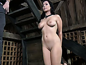Appetizing busty brunette is waiting for punishment standing on knees