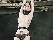 Extravagant porn model is tied up and suspended