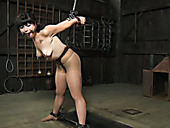 Bondage master attaches the nipple clamps to her along with some weights