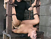 Hardcore bdsm video featuring belted whore