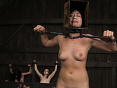Three restrained porn models are ready for torturing