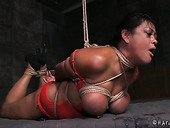 Bondage slut Maxine is fucked with the help of vibrator and dildo