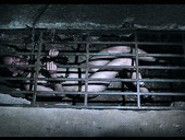 Slutty chick in the cage Sierra Cirque gets punished in the dark cold room