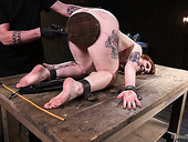 Tied up bitch Barbary Rose is punished by one perverted dude