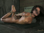 Hogtied black chick Skin Diamond cries of pain and delight