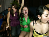 Whorish bitches are gathered in a club and suck strippers' dicks