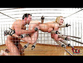 Creative hardcore sex video in cage